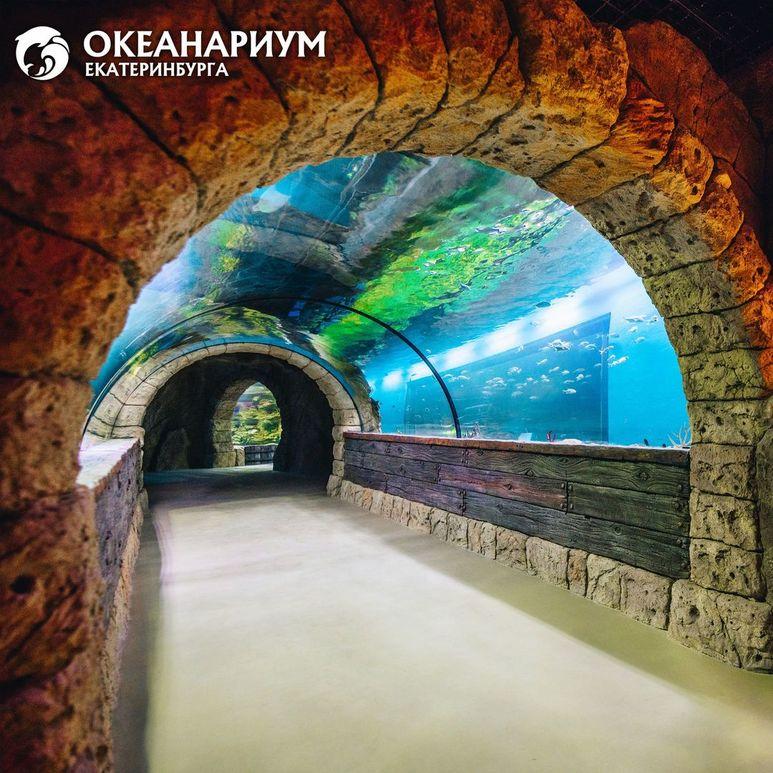 Строительство океанариума в екатеринбурге фото
